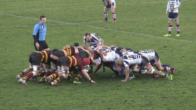 Stourbridge 12 1stXV 37
