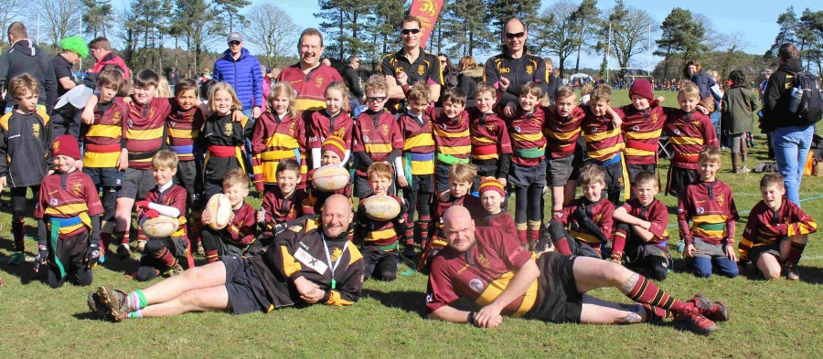 U8 End Of Season Report 2015-2016